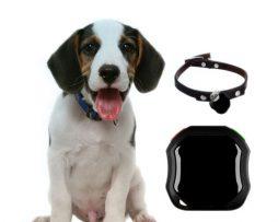 Pro GPS tracker met hond
