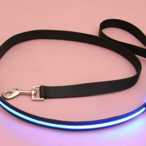 LED Riem Blauw 1
