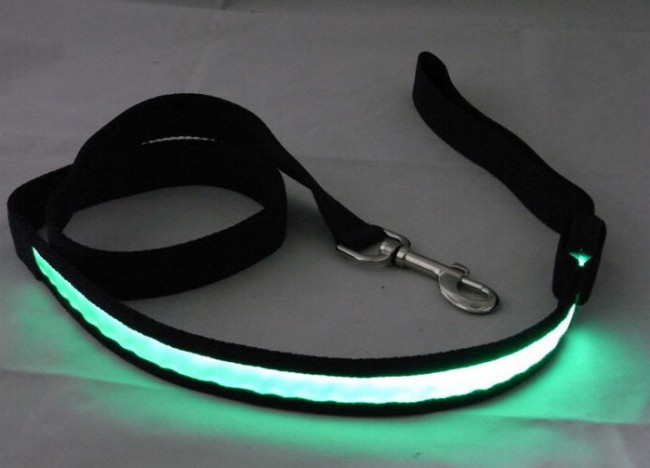 LED Hondenriem Groen
