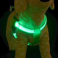 LED Tuigje Groen