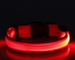 LED Halsband Rood