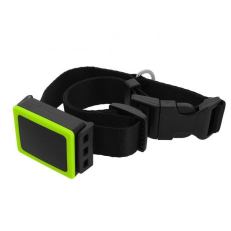 weenect-gps-tracker-hond-halsband