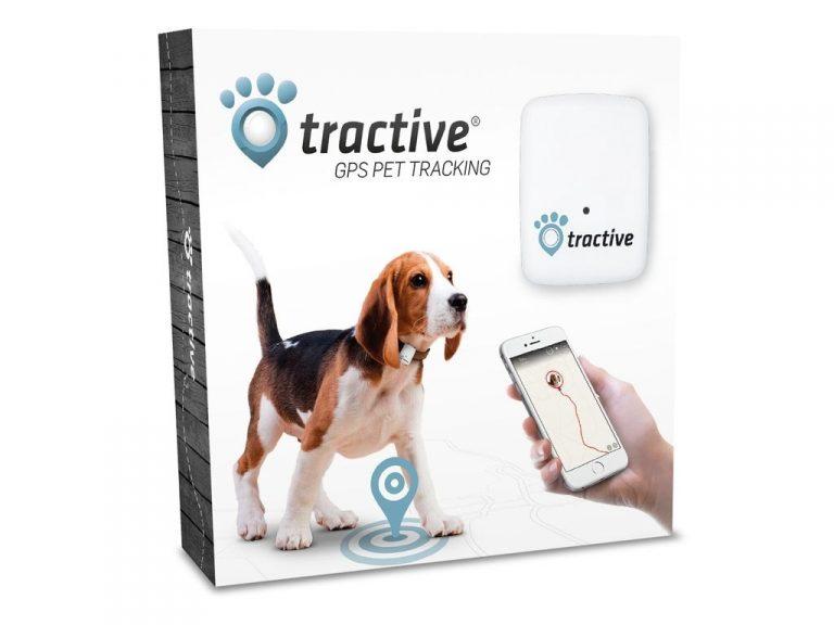 gps-tracker-kat-hond-tractive