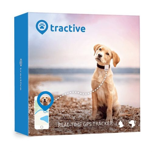tractive-gps-tracker-kat-hond